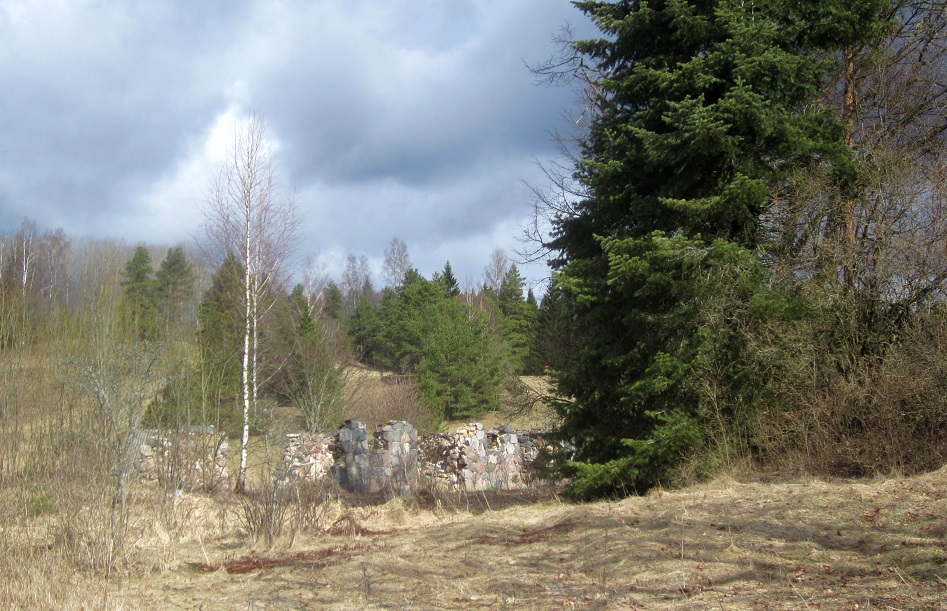 Hiiemägi