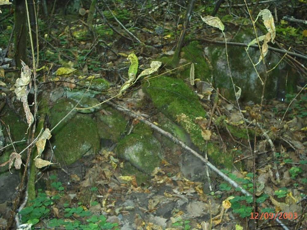 Vana kiviaed hiiemäel