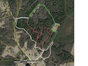 Kaart. Roheline: ettepanekus toodud raja variant; punane – likvideeritav rada.